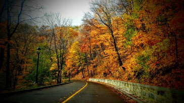 fall-color-drive