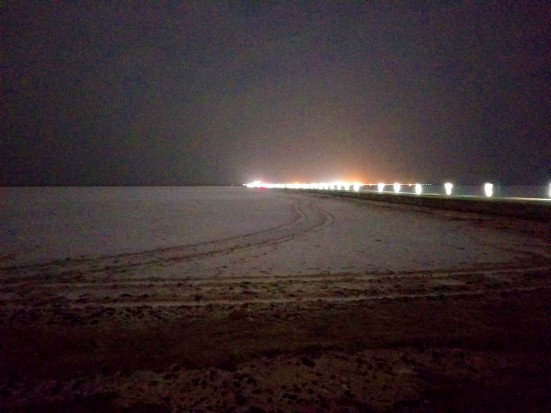 white rann under night