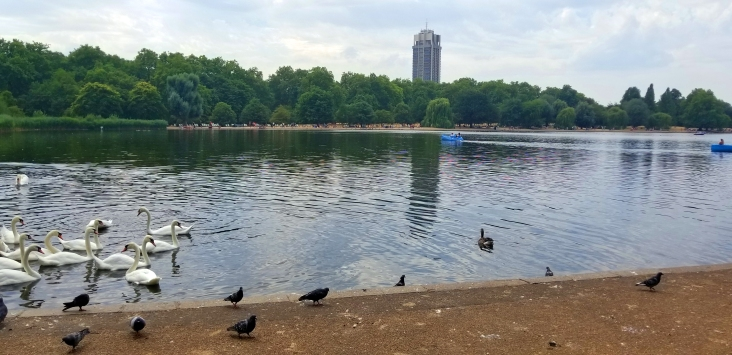 Serpentine Lake at Hyde Park