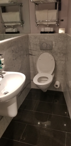 Radisson Blue Bathroom